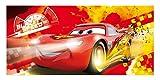 Keilbild Wandbild Leinwand CARS 1 | Disney | Lightning McQueen | 33x70 cm