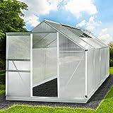 Aluminium Gewächshaus mit Stahlfundament 7,6 m³ 250x190x195cm 6mm Platten 2 Fenster Treibhaus Glashaus Alu rostfrei