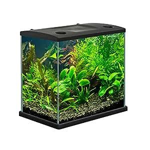 acquario cleo in vetro colore nero per pesci rossi