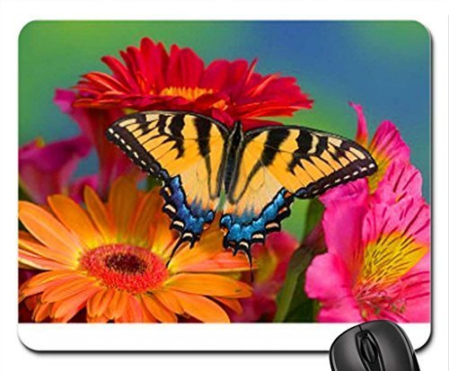 gerbers-and-wings-mouse-pad-mousepad-butterflies-mouse-pad
