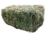 Heu-Heinrich® balle di fieno quadrate di erbe organiche da 7 kg per conigli e porcellini d'india – raccolto 2018