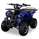 Kinder Quad S-8 Farmer 125 cc Motor Miniquad 125 ccm blau Toronto