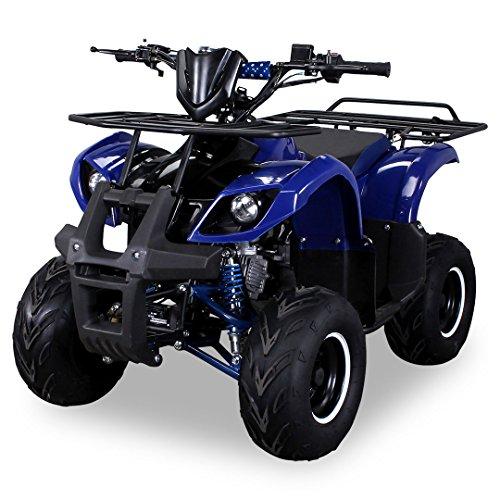 Kinder Quad S-8 Farmer 125 cc Motor Miniquad 125 ccm blau Toronto (Gas Quad Atv Für Kinder)