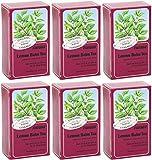 (6 PACK) - Floradix - Lemon Balm Organic Herbal Tea   15 Bag   6 PACK BUNDLE