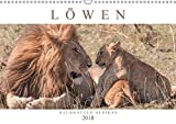 Löwen - Raubkatzen Afrikas (Wandkalender 2018 DIN A3 quer): Fasziniernde Aufnahmen der majestätischen Raubkatzen - auch als verspielte Löwenkinder ... [Kalender] [Apr 01, 2017] Lippmann, Andreas