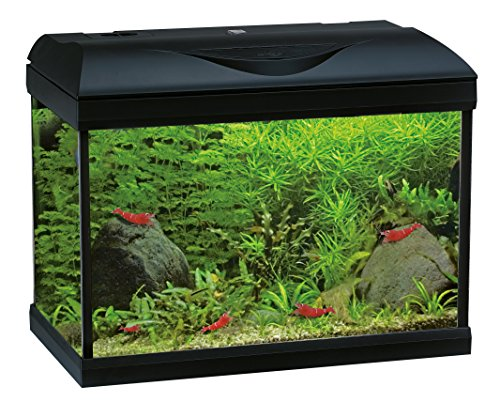 Wave A2001628, Acquario Riviera 40 Led Coldwater, Nero