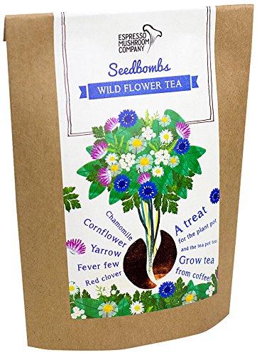 Espresso Mushroom Company  - Kit de...