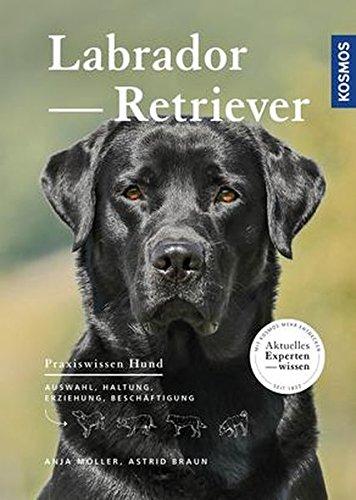 Labrador Retriever: Auswahl, Haltung, Erziehung, Beschäftigung (Praxiswissen Hund) -