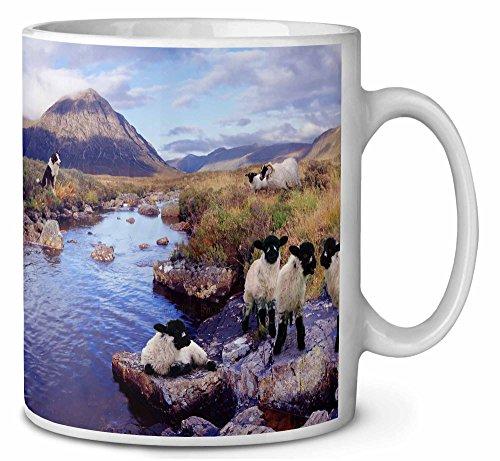 Border Collie auf Schafe beobachten Kaffeetasse Geburtstag / Weihnachtsgeschenk