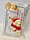 Tiny 4.5cm Santa Teddy Bear with Adoption Certificate in Gift Bag, Christmas Stocking Filler