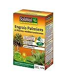 SOLABIOL SOPALMY15 Engrais palmiers et plantes méditerranéennes 1,5 Kg, Utilisable en Agriculture Biologique