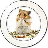 Advanta - Tax Disc Holders Lunch Box Hamster AutovignetteGenehmigungsinhaber Geschenk