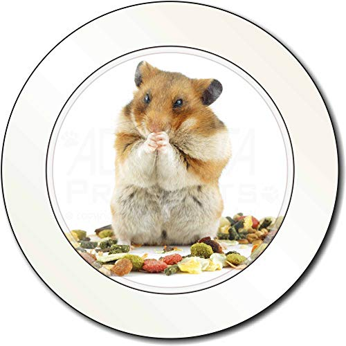 Advanta - Tax Disc Holders Lunch Box Hamster AutovignetteGenehmigungsinhaber Geschenk