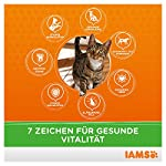 IAMS Adult Cat Lamb 13