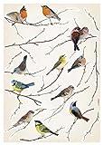 Brewster Komar lv19005Abziehen & Aufkleben Birds europäischen Wandaufkleber