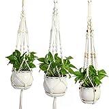 Komost Pflanzen Aufhnger, 3 Set Makramee Blumenampel Baumwollseil, Blumentopf Pflanzen Halter Aufhnger für Innen Auen Decken Balkone Wanddekoration