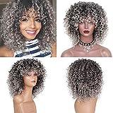 Rosennie Damen Lange Afro-lockige Perücke Hort Afro Curly Mix graue Haar Synthetische neue Ankunft billige Perücken Frisur Kunsthaar Bräunlich Grau Perücke Günstige Perücken (Grau)
