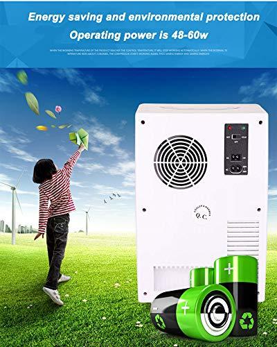 51O end7PKL - JCDZSW Mini refrigerador 10L Caja de calefacción y refrigeración electrónica de Doble propósito para automóvil Familiar, refrigerador para la Piel, Alimentos, medicamentos, hogar y Viajes