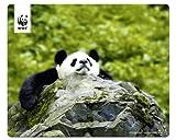 Speedlink Terra WWF Mauspad Panda (Sie unterstützen WWF Deutschland mit 50Cent pro gekauftem Exemplar, verschiedene Motive)
