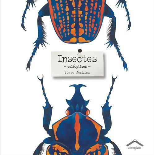 Insectes ; coléoptères