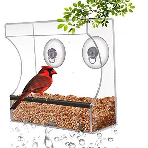 CRYSTAL CLEAR BIRD FEEDER - Suction Window Feeders Birds, Cats and Kids Love - Easy to Clean and Fill - See Cardinals, Finches and Orioles Feed Inches From Kitchen Windows - 100% Money Back Guarantee Test