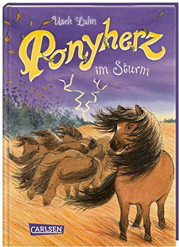 Ponyherz im Sturm  Bd. 14