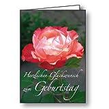10er-Pack Geburtstagskarte A6 mit Text Herzlichen Glückwunsch zum Geburtstag, Motiv Rose