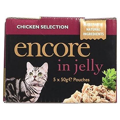 Encore Cat Pouch 8