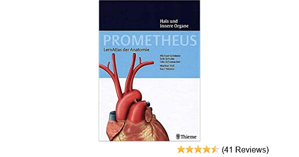 PROMETHEUS Lernatlas der Anatomie. Hals und Innere Organe: Amazon.de ...