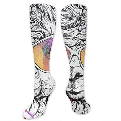 CVDFVFGB Socks Hello Zebra Hot Womens Stocking Holiday Sock Clearance for Girls (Red Hot Holiday Kostüm)