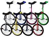 Monz Terra Bikes Einrad