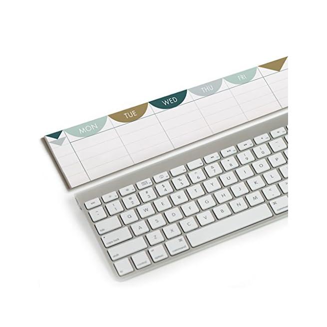 Green composto da 3/scomparti per penne e cancelleria 20*10*19cm Gespout Porta oggetti multiuso da scrivania