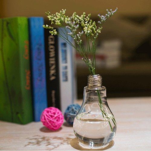 Jarrones Bombilla Forma de Tabla Botella de Vidrio Florero Decoración