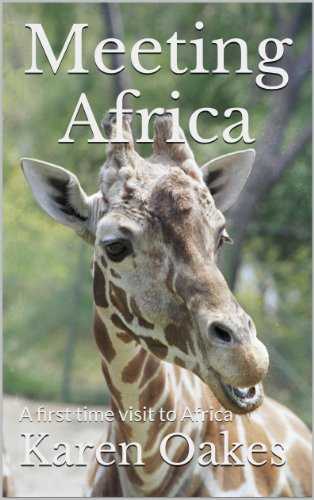 Meeting Africa (English Edition)