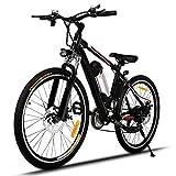 Beautytalk 26 Zoll Elektrofahrrad E-bike 35km/h Faltbare Mountainbike elektro Fahrrad mit Kapazität Lithium-Akku,LED-Anzeige,250W Max. (1)