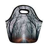 Jieaiuoo Portable Lunch Bag,Mystic House Decor,Road Towards The Light Cloudy Autumn Sky Trees Golden Leaves on The Ground Decorative,Gray Red,for Kids Adult Thermal Insulated Tote Bags