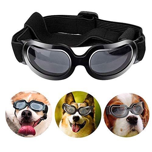 PETEMOO Haustier-Hundeschutzbrillen UV-Sonnenbrille, winddichter Schutz Hündchen-Welpen-Sonnenbrille, Hundebrille für großen Hund