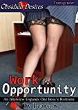 Work Opportunity (English Edition)
