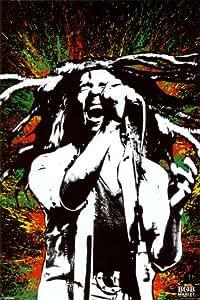 Bob Marley - Paint Slash 61 x 91 cm Affiche