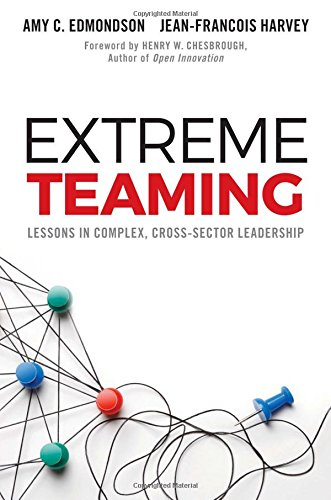 Extreme Teaming: Lessons in Complex, Cross-Sector Leadership (Extreme Arbeit)
