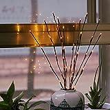 Wokee LED Außenlichterkette Solar,Warme LED Willow Branch Lampe Blumenlichter 20 Glühbirnen 30 Zoll Home Christmas Party Garten Decor,Outdoor Lichterkette 77 cm 20 LEDs Lampions