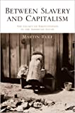 Between Slavery and Capitalism - The Legacy of Emancipation in the American South - Martin Ruef