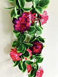 #10: Rain Forest Artificial Flower and Plant Vines (Value Pack of 2 x 5ft) Essence Pink and Hydra Green / Artificial Flower and plants for living room / Artificial Flower and plants for decoration / Artificial Garlands / Artificial Flower Garlands / For , Wedding Decoration, Party Decoration, Stage Decoration / Wall Hanging Flower and Plants / Artificial flower and Plant Creeper / Plastic Flower and Plant Vines / Hanging Flower and Plants for Home Decor / Artificial Plant Leaves