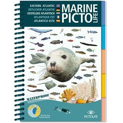 Pictolife Atlantique Est