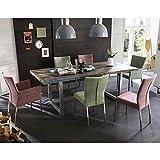 Pharao24 Design Essgruppe im Loft Style Bunten Stühlen (7-teilig)