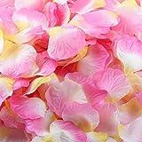 Künstliche Blumen,Rosenblüten Rote Rosenblätter 1000 Stück Künstliche Seiden Blumenblätter Seidenblumen Streudeko für Hochzeit Party Valentinstag Heiratsantrag Streublumen Tischdeko Moginp (E)