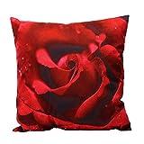 iHome Kissenbezug Dekorative Case, weiche Kurze Plüsch, Platz 45 x 45cm, Rot Rose Blume