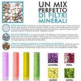 Kit Cartucho de Filtro Para Alcachofa Ducha Filtro Vitamina C - Ducha de Mano para Baño - Con Filtro Purificador para Cuidado del Cabello y la Piel - Accesorios de Ducha con Filtro de Gel con Aroma