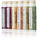 ArtNaturals Paquete de 6 Sabores Surtidos - 0.15 oz cada uno - Barra de Labios para Labios secos - Reparación de Labios y Terapia con aceite