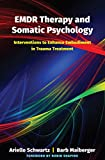 EMDR Therapy and Somatic Psychology – Interventions to Enhance Embodiment in Trauma Treatment